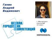 Ганин Андрей Вадимович г. Мончегорск Школа № 8