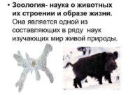 Зоология- наука о животных их строении
