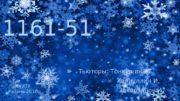 11161 -51 Тьюторы: Тонкушина Т.