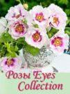 Розы Eyes Collection Розы серии Eyes