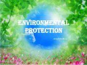 environmental protection Julia Volodkina Pollution in the