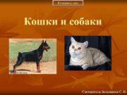 Prezentacii com Кошки и собаки Составитель Большаков С