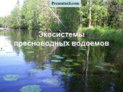 Prezentacii com Экосистемы пресноводных водоемов Составитель Большаков С