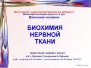 БИОХИМИЯ НЕРВНОЙ ТКАНИ Презентация слайдов к лекции к.б.н.
