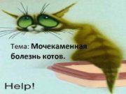 Тема Мочекаменная болезнь котов Мочекаменная болезнь у