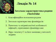 Лекція № 1 4 Загальна характеристика родини Flaviviridae