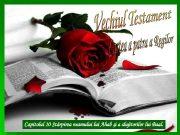 Capitolul 10 Stârpirea neamului Ahab şi a slujitorilor