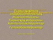 Презентация 15 дріс Тырыса Кампило Хеликобакт КАЗ