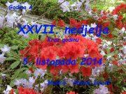 Godina A XXVII nedjelja Kroz godinu 5 listopada