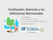 Fertilización Nutrición y las Deficiencias Nutricionales Alex Bolques