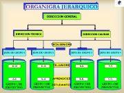 ORGANIGRA JERARQUICO DIRECCION GENERAL DIRECCION TECNICA DIRECCION CALIDAD