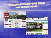 Situs web Pemerintah Daerah salah satu