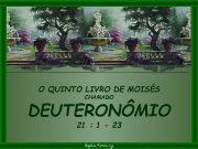 O QUINTO LIVRO DE MOISÉS CHAMADO DEUTERONÔMIO 21