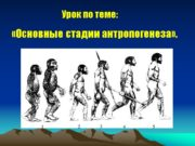 Урок по теме: «Основные стадии антропогенеза». Общая схема