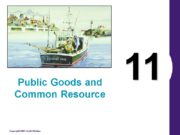"""11 Public Goods and Common Resource """"The best"""