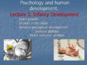 Psychology and human development. Lecture 3. Infancy Development