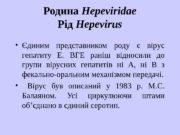 Родина Hepeviridae Рід Hepevirus  Єдиним представником роду