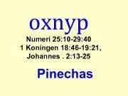 oxnyp Numeri 25 10 -29 40 1 Koningen