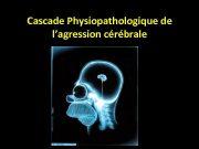 Cascade Physiopathologique de l agression cérébrale Energétique cérébrale