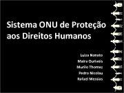 Sistema ONU de Proteção aos Direitos Humanos Luiza
