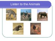 Listen to the Animals Animals Kangaroo It has