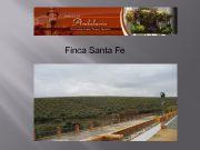 Finca Santa Fe Finca Santa Fe The