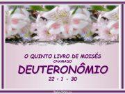 O QUINTO LIVRO DE MOISÉS CHAMADO DEUTERONÔMIO 22