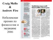 Craig Mello & Andrew Fire Нобелевская премия по