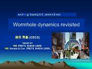 セミナー 大阪市立大学 2009年 6月19日 Wormhole dynamics revisited