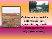 Zmiany w środowisku naturalnym jako wyzwania/zagrożenia bezpieczeństwa międzynarodowego