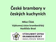 České brambory v českých kuchyních Milan Čížek Výzkumný