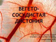 Вегето-сосудистая дистония Подготовила студентка 5 курса лечебного факультета