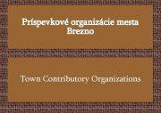 Príspevkové organizácie mesta Brezno Town Contributory Organizations