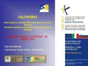 SALTWORKS Valorizzazione ecosostenibile delle saline tra Italia e