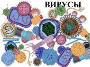 ВИРУСЫ ВИРУСЫ субмикроскопические неклеточные формы жизни, обладающие свойством
