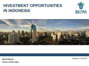 INVESTMENT OPPORTUNITIES IN INDONESIA Nurul Ichwan Director of