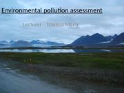 1 Environmental pollution assessment  Lecturer – Nikitina