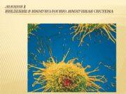 Иммунология — наука, изучающая генетические, молекулярные и клеточные