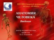 НОУ ВПО Самарский медицинский институт «РЕАВИЗ» АНАТОМИЯ ЧЕЛОВЕКА