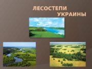ЛЕСОСТЕПИ   УКРАИНЫ   На юг