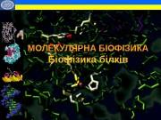 МОЛЕКУЛЯРНА БІОФІЗИКА Біофізика білків •  •