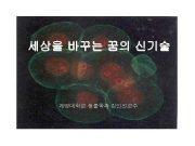 세상을 바꾸는 꿈의 신기술 계명대학교 생물학과 김인선교수 mouse