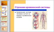 Презентация Кровообращение человека