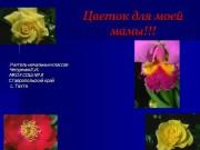 Презентация Цветок для мамы