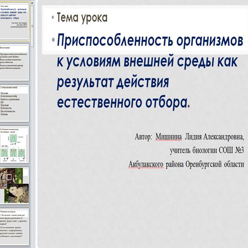 Презентация Приспособленность организмов