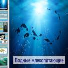 Презентация Водные млекопитающие