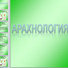 Презентация Арахнология