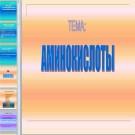 Презентация Аминокислоты