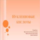 Презентация Нуклиновые кислоты
