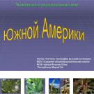 Презентация Растения Южной Америки